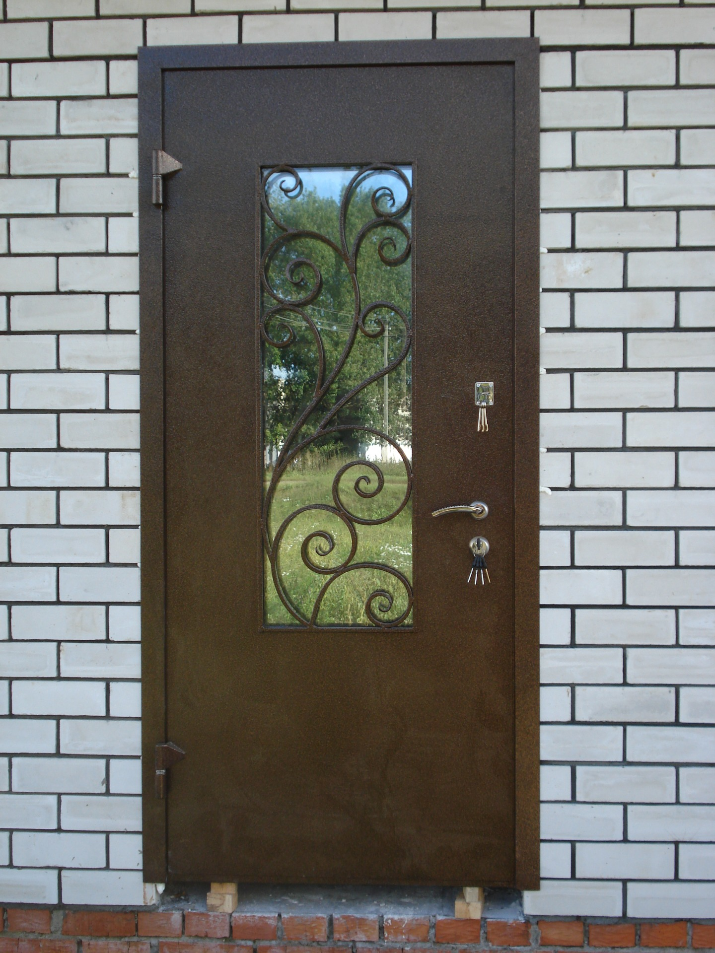 Металлические двери- стекло